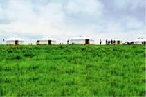 草原深处的天一游牧人家