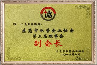 东莞市私营企业协会第三届理事会副会长