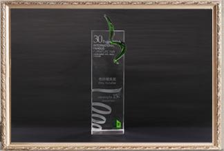 30届国际名家具(东莞)展览会15周年庆市场精英奖